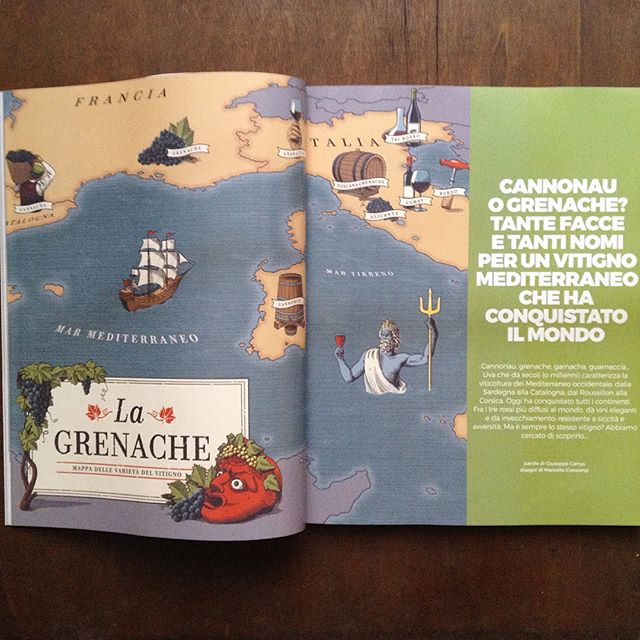 This month on @gambero_rosso a map and several spot #illustrations for a  detailed coverage of the #grenache grape and its moltitude of wines all over the #mediterranean Inspired by ancient maps as well as popular illustrated toristic maps of the early 20th Century. 👹🍇🍷