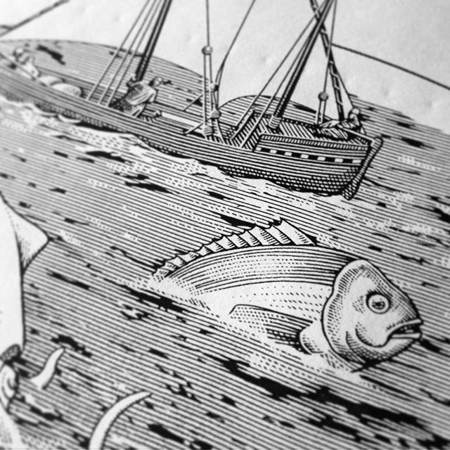 Detail of a Mediterranean #sea in progress... 🔎⛵️🐟
